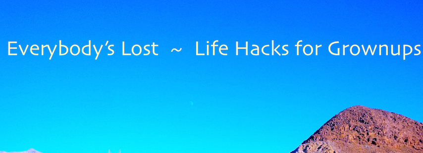 Everybody's Lost- Life Hacks for Grownups